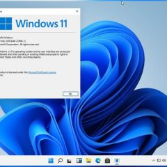 Windows 11 leaked Pre-launch Version ISO build.21996.1 (Download Link)